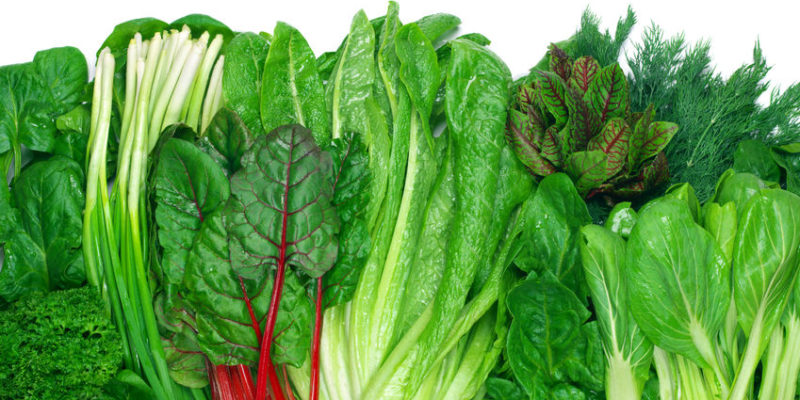 53308721 - various green leafy vegetables in row on white background. top view point.